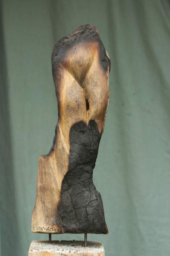 steffen-klauke-contractions-2012-60cm-treibholz-neuseeland